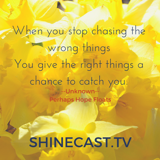 Stop Chasing the Wrong Things - Discover Grow Shinecast®